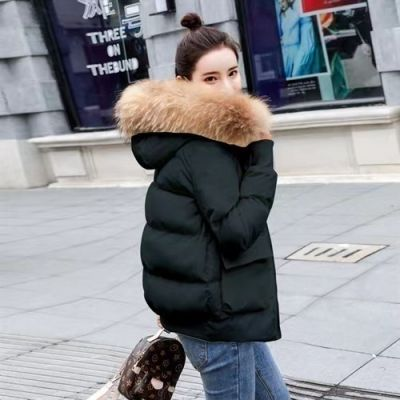 Short padded coat with fur trim hood for women
